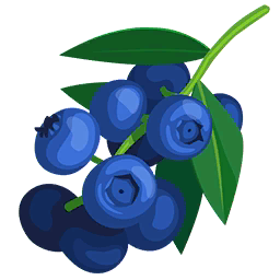 Blueberry clipart transparent Blueberries Wikia Paradise powered Wikia