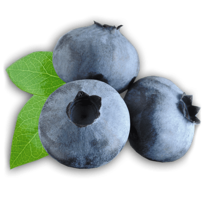 Blueberry clipart transparent Zoom Clipart Blueberries PNG StickPNG