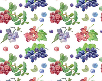 Blueberry Muffin clipart berry Black Etsy red currant illustration