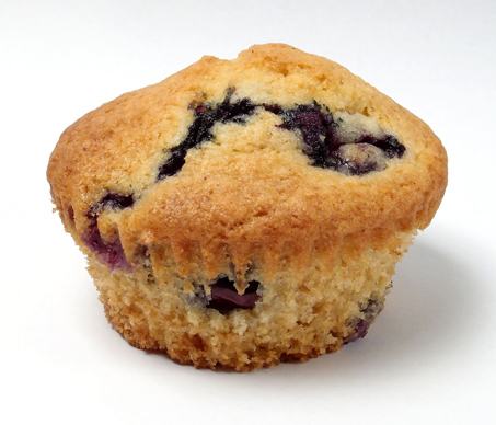 Blueberry Muffin clipart minnesota state Bogs blueberry the state the