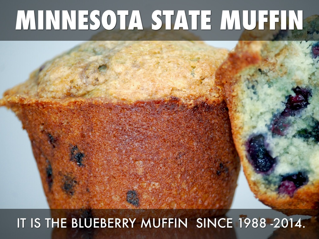 Blueberry Muffin clipart minnesota state Minnesota SEAL Swanson by Symbols