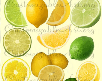 Citrus clipart orange fruit Printable Citrus Images Art Digital