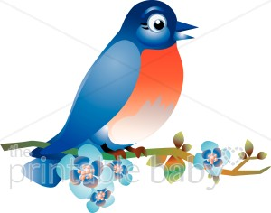 Bluebird clipart Animal Blue Bird Bird Clipart