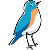 Bluebird clipart – Bluebird Clip Clip Art