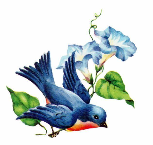 Bluebird clipart mom Images bluebird 157 best Pinterest