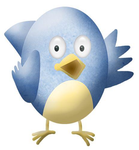 Bluebird clipart robin bird Best BIRD Pinterest blue 175