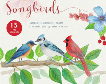Bluebird clipart songbird Commercial and use Etsy art