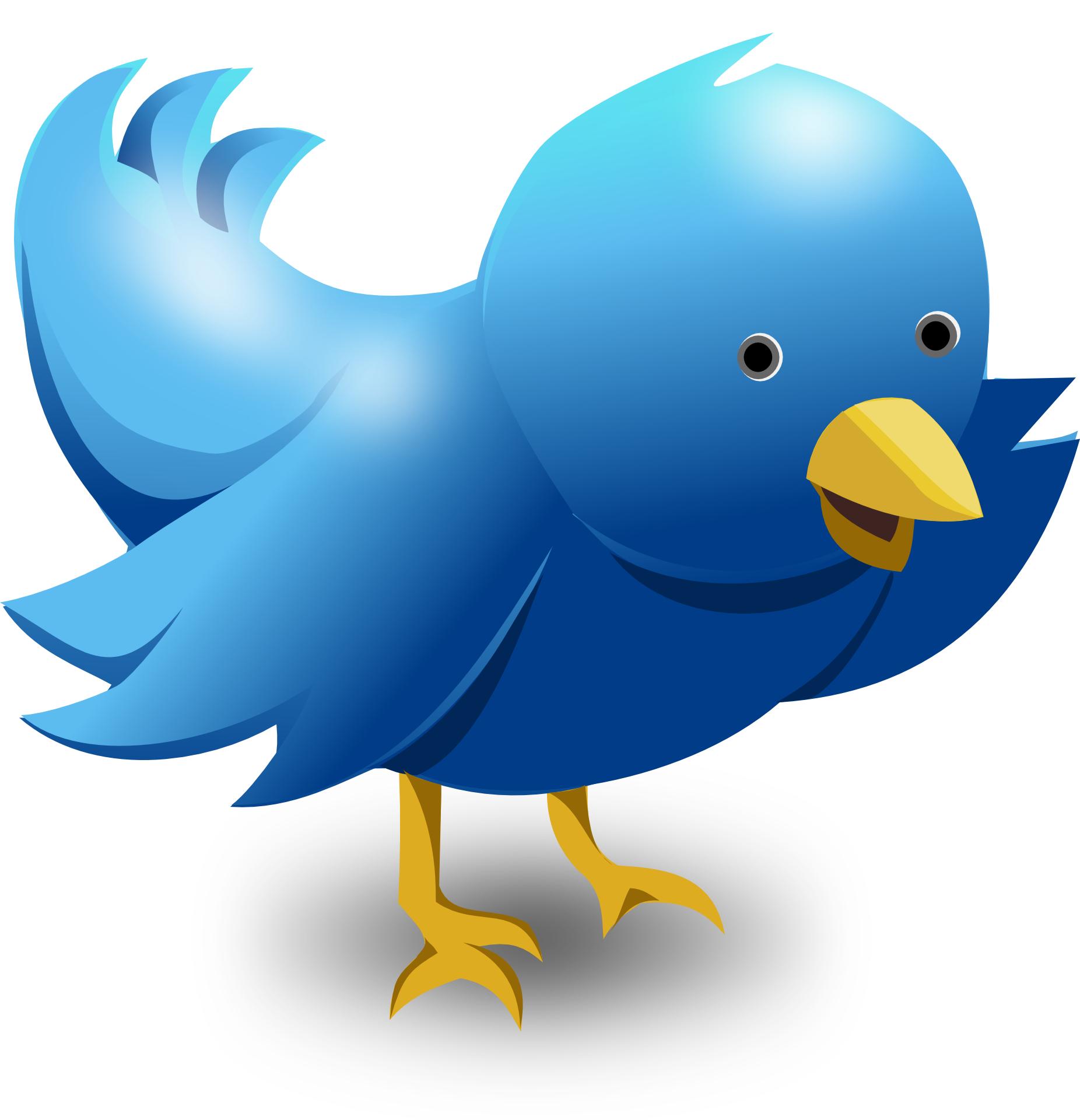 Bluebird clipart tweet Vector Art Art twitter Free