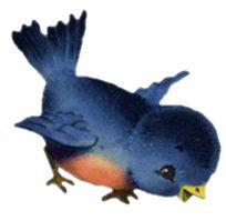 Bluebird clipart vintage On Menaboni Find this Eastern