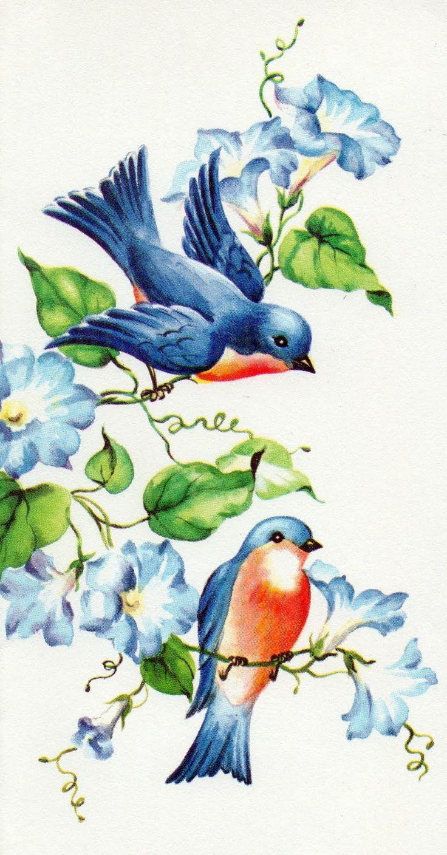 Bluebird clipart vintage On 25+ Find this Bluebird