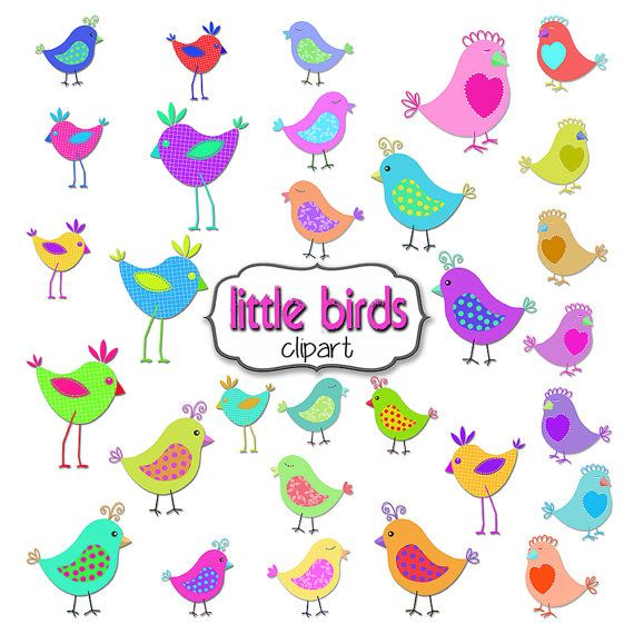 Parrot clipart rainbow color Drawn Best Clipart hand and