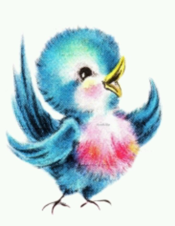 Blur clipart love bird Best on Pin Find and