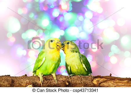 Blur clipart love bird Of fairy lovebird Stock on