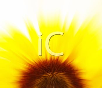 Blur clipart sunflower Favorites  New iCLIPART images