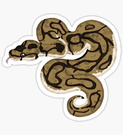 Boa clipart pet snake Stickers Ball/Royal Python Spider Sticker