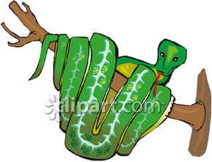 Boa Constrictor clipart #9