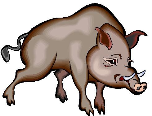 Boar clipart #15