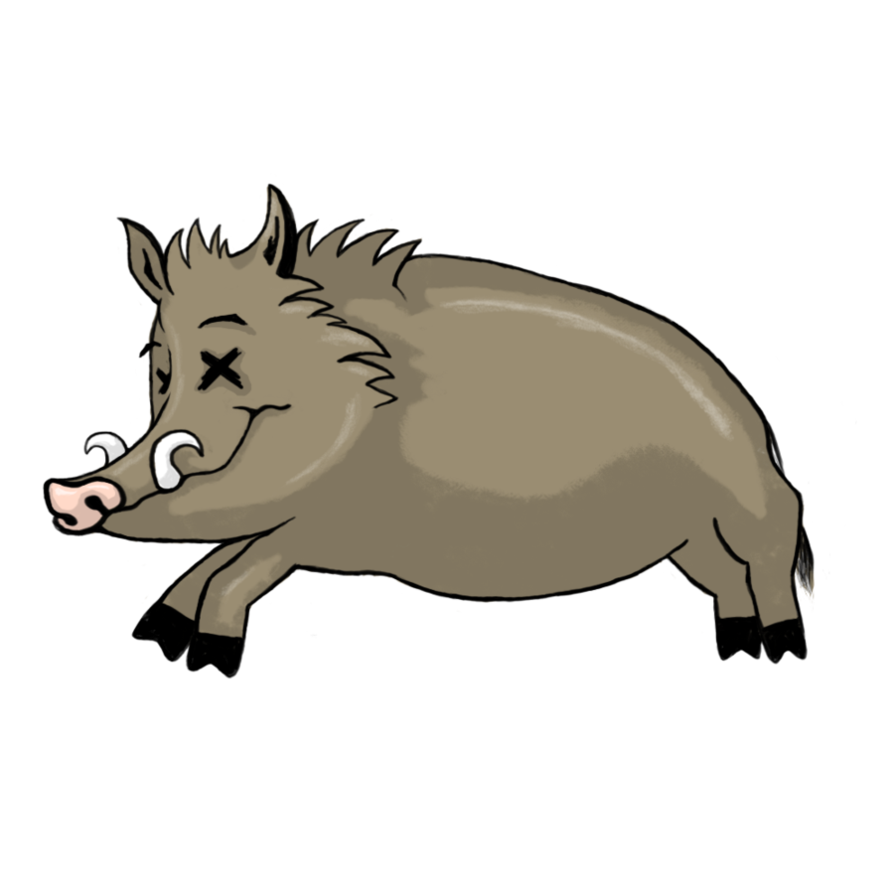 Boar clipart #7