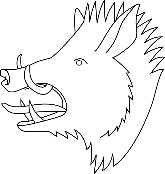 Boar clipart face Vector at online Download Head