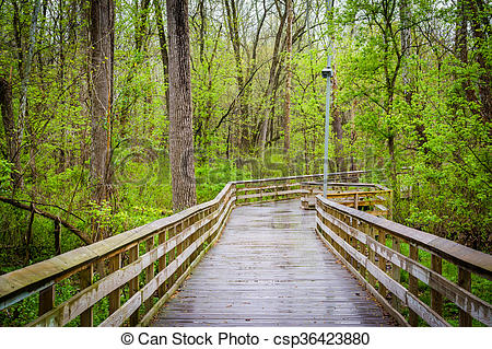 Boardwalk clipart lake Roland at Park Baltimore in