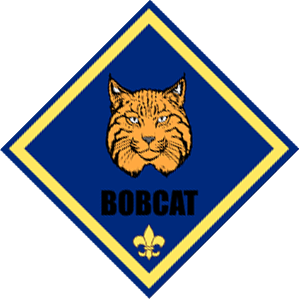 Bobcat clipart cub scout By Boy understanding is One