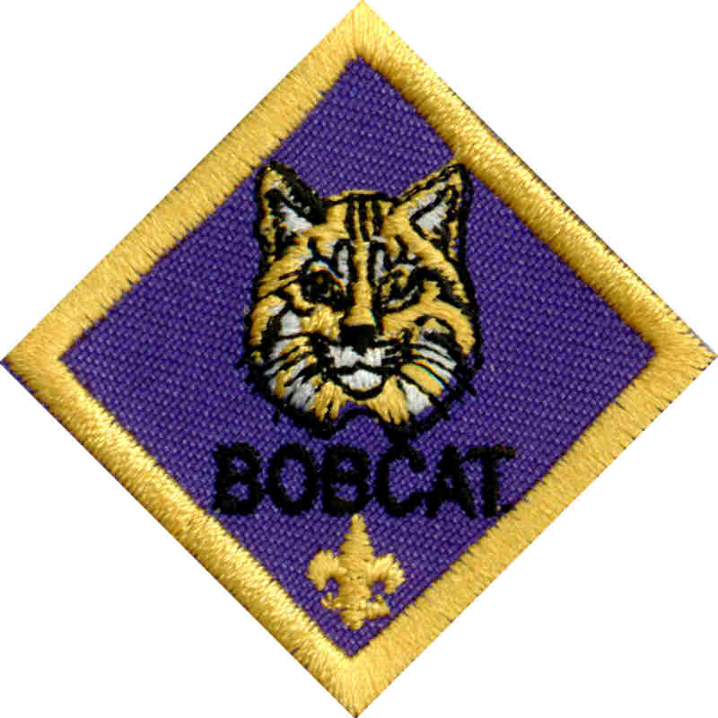 Bobcat clipart cub scout  Scouts Cub Levels