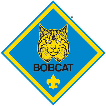Bobcat clipart cub scout To must who boys The