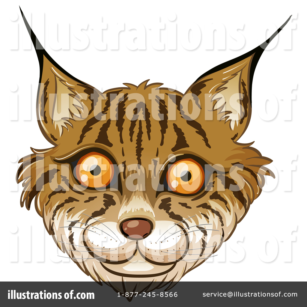 Bobcat clipart cute cartoon By ilration 1344292 The bobcat