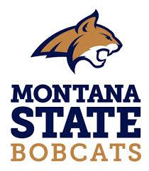 Bobcat clipart montana state  Report State Basketball Montana