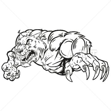 Bobcat clipart tiger claw White on Graphic images of