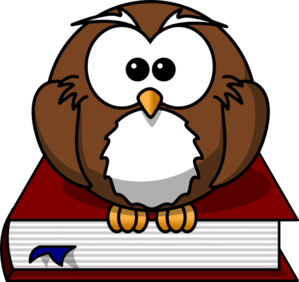 Bobook clipart animated Sitting Cartoon collection Owl books