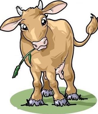 Bocah clipart kambing Paud Sapi sedang dan sapi