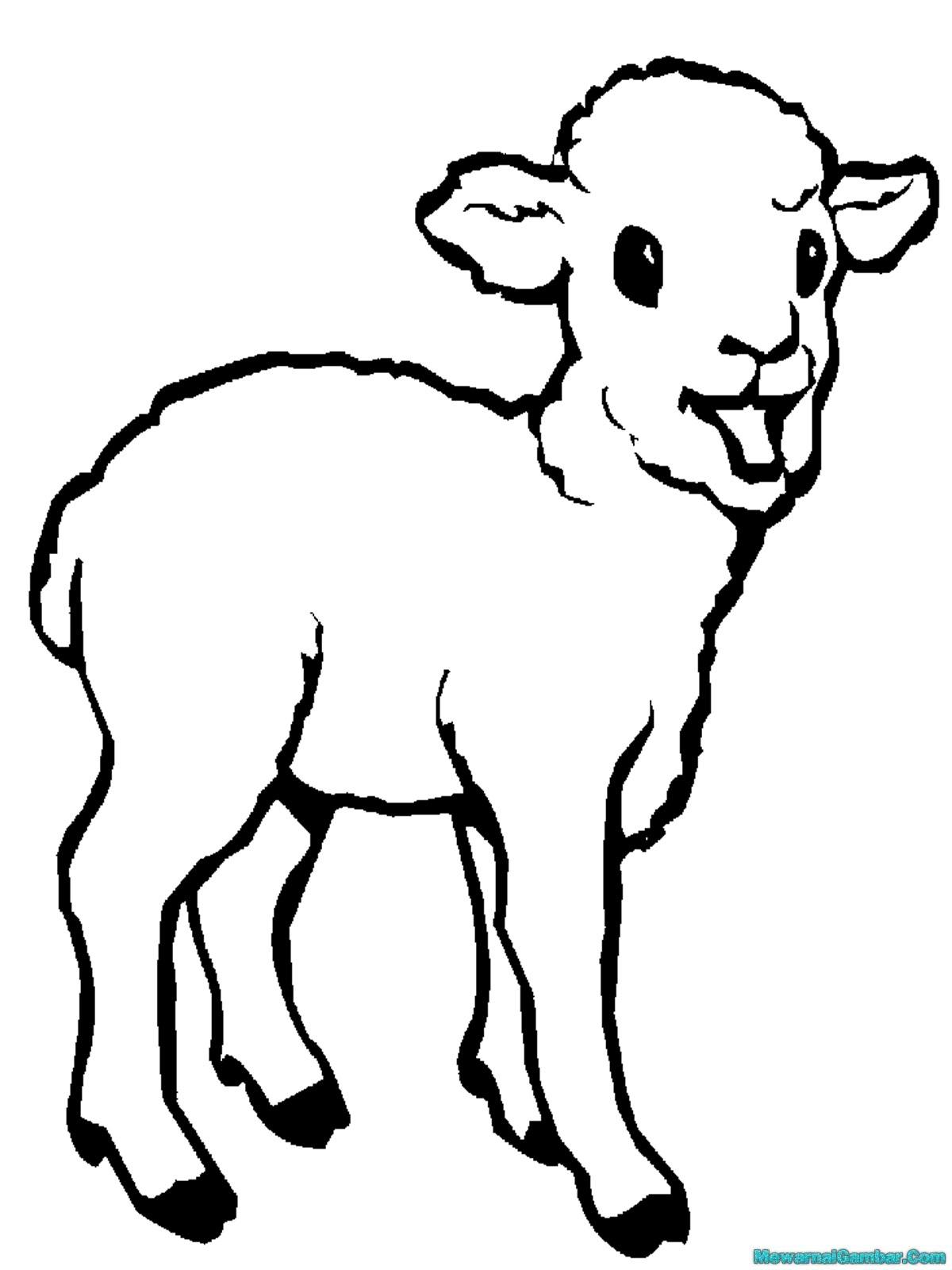 Bocah clipart kambing TERSANA Kartun Picture Mewarnai Binatang