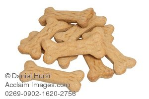 Bones clipart dog biscuit Acclaim bone biscuits stock and