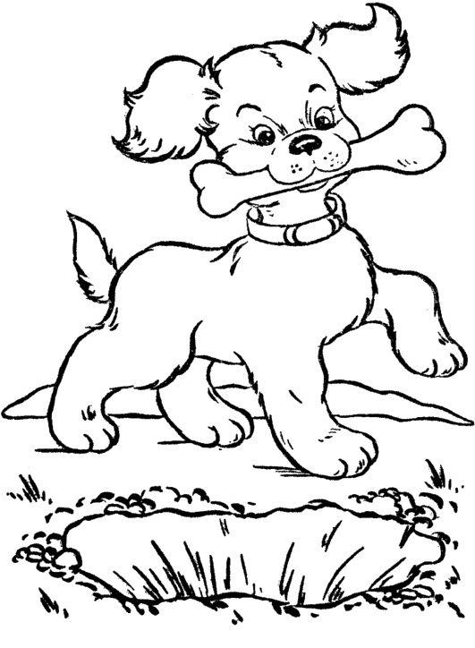 Drawn bones Best 12 Coloring Pinterest Dogs
