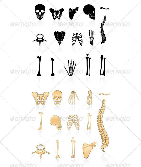 Bones clipart humerous Ideas Pinterest psd) DOWNLOAD on
