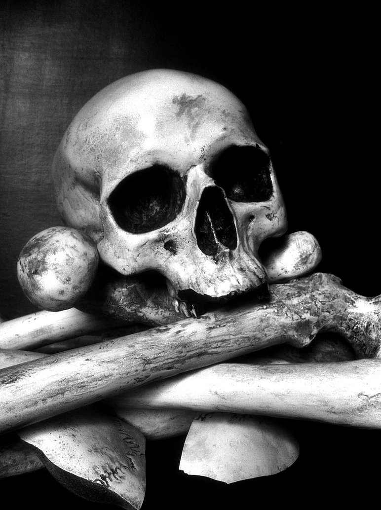 Bones clipart pile bone Pile Drawing by Bones Bones