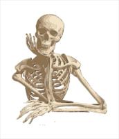 Bones clipart skelton Images Bones Free Clipart and