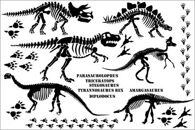Bones clipart stegosaurus On about best MONSTERS/DINOSAURS images