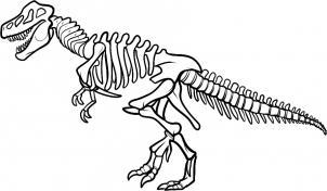 Bones clipart stegosaurus Step Lessons Teach Dinosaur Dinosaur