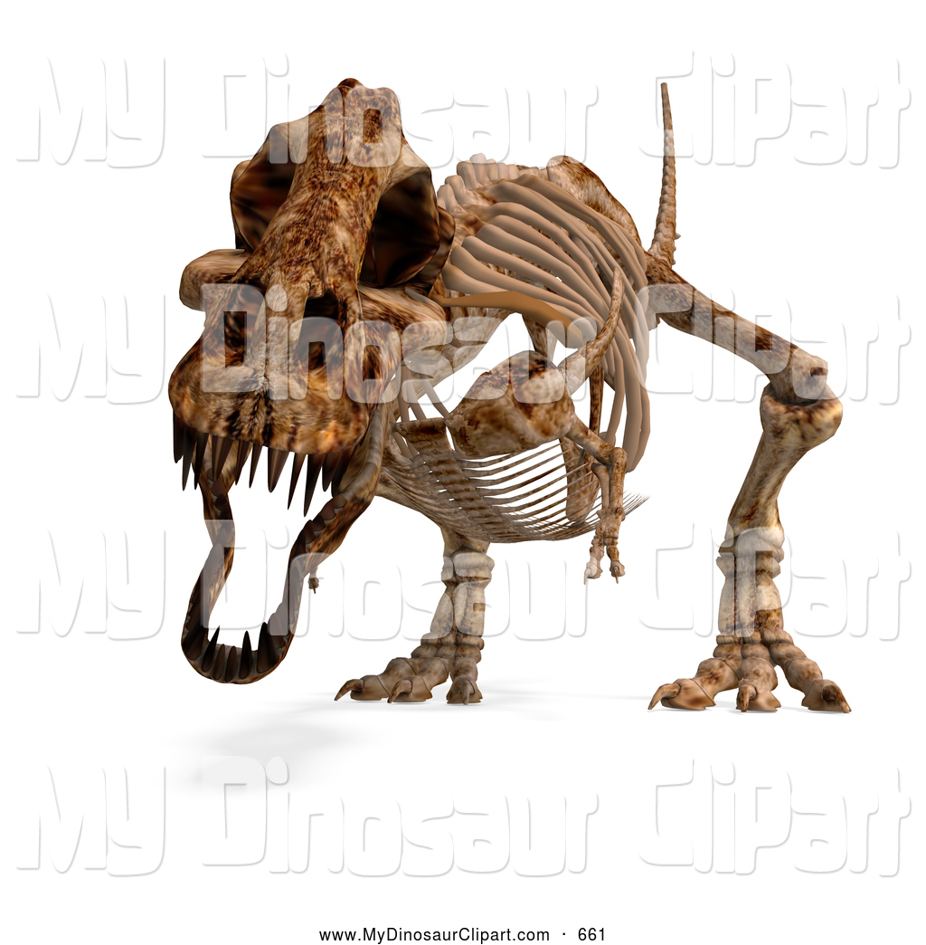 Bones clipart t rex Designs Skeleton Dinosaur Royalty on