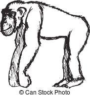 Bonobo clipart Bonobo  Art Clip drawn