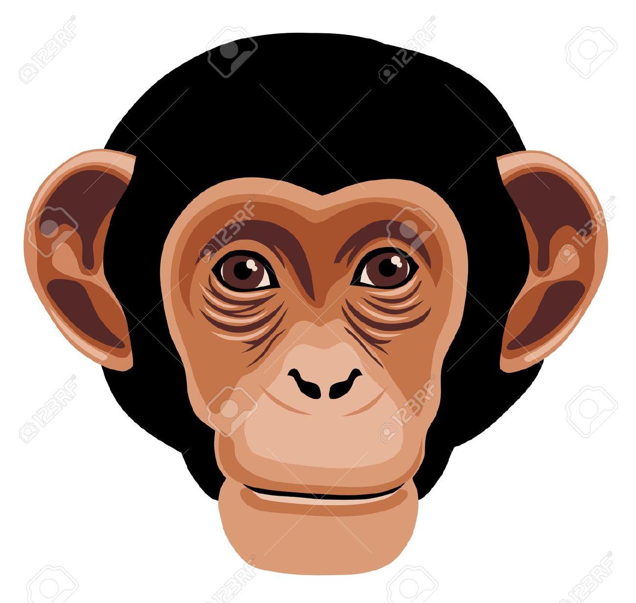 Bonobo clipart Clipart Chimpanzee 99 Top Clipart