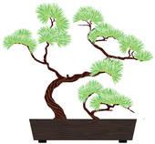 Bonsai clipart Clip Bonsai tree bonsai Tree