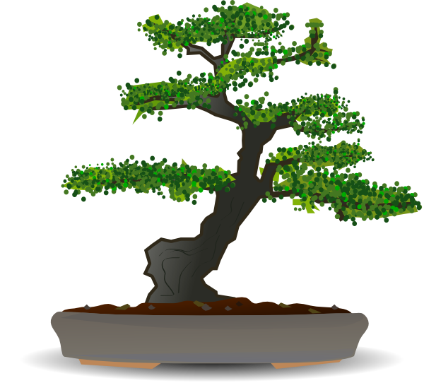 Bonsai clipart Tree Bonsai Collection Clipart tree