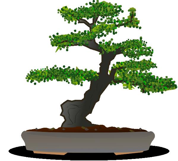 Bonsai clipart Tree Bonsai Collection Clipart tree