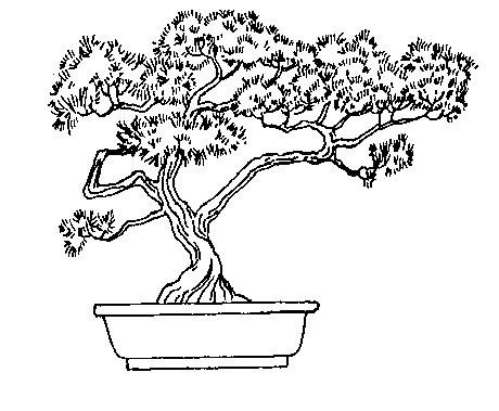 Bonsai clipart black and white Bonsai tree Tree Kanji Collection