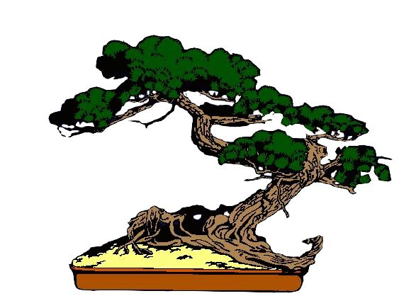 Bonsai clipart cypress tree Images Bonsai on Pinterest 14