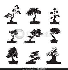 Bonsai clipart cypress tree Art Tree Bonsai Silhouette