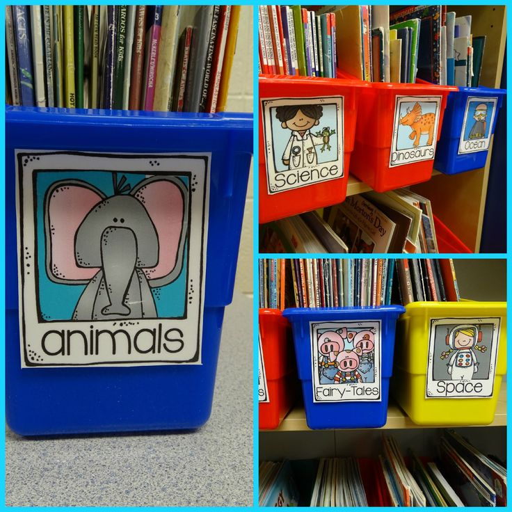 Bookcase clipart classroom library Library! Cutest classroom Classroom your